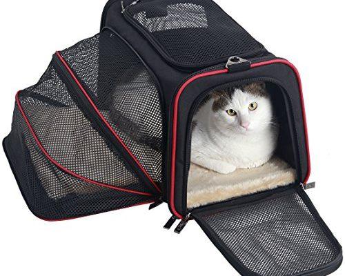 petsfit ausdehnbare transportbox f r hunde und katzen. Black Bedroom Furniture Sets. Home Design Ideas