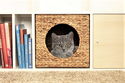 ikea kallax expedit katzenkorb 33 x 33 x 33 cm natur korb aus wasserhyazinthe tierkorb tierh hle. Black Bedroom Furniture Sets. Home Design Ideas