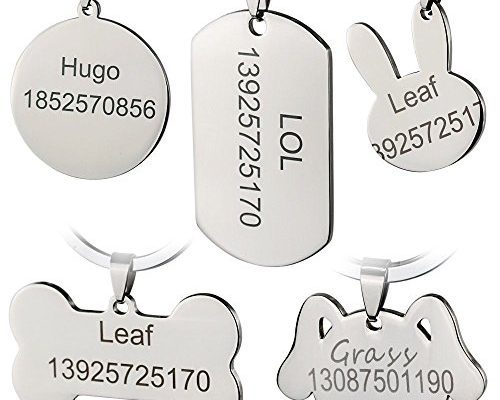 bangoo edelstahl pet id tags personalisierte individuelle. Black Bedroom Furniture Sets. Home Design Ideas